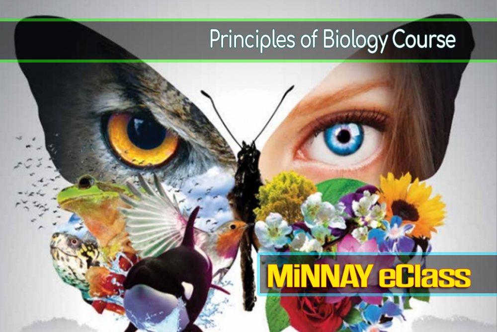 General Biology Online Course